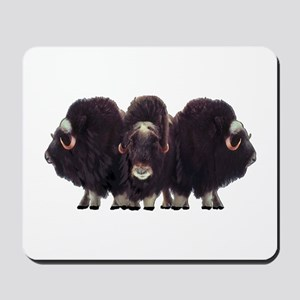 STANDING STRONG Mousepad