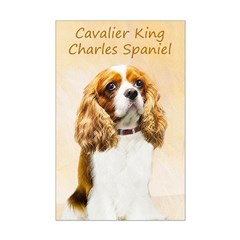 Cavalier King Charles Spaniel Posters