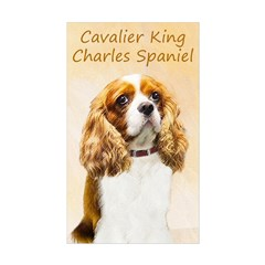 Cavalier King Charles Sp Sticker (Rectangle 50 pk)