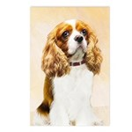 Cavalier King Charles Spa Postcards (Package of 8)