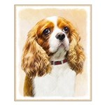 Cavalier King Charles Spaniel Small Poster