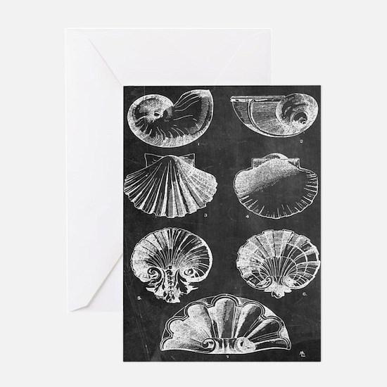 rustic vintage seashells Greeting Cards