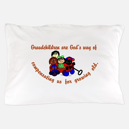 Compensation Pillow Case