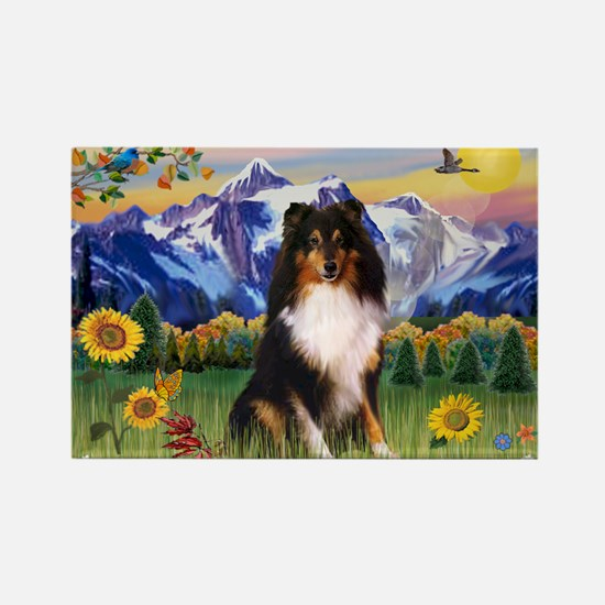 Mt. Country & Tri Shetland Sheepdog Rectangle Magn