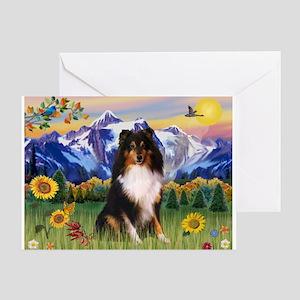Mt. Country & Tri Shetland Sheepdog Greeting Card
