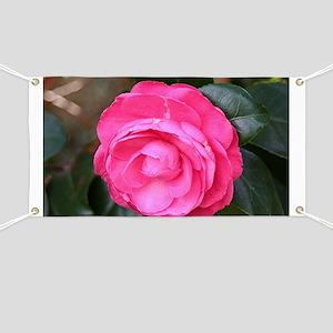 Dark pink camellia flower in bloom in garde Banner