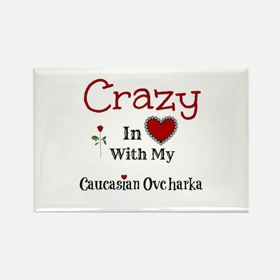 Caucasian Ovcharka Magnets