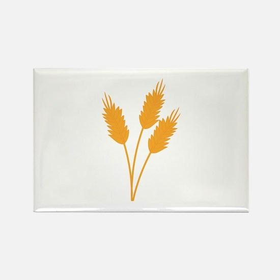 Wheat Stalk Magnets