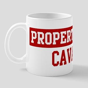 Property of Cavapoo Mug