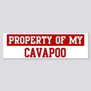 Property of Cavapoo Bumper Sticker
