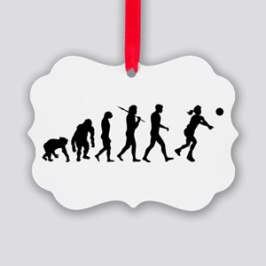 Evolution of Volleyball Ornament
