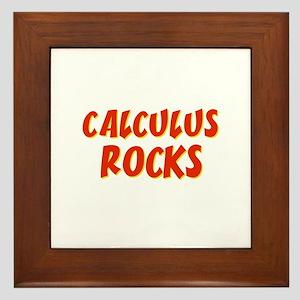 Calculus~Rocks Framed Tile