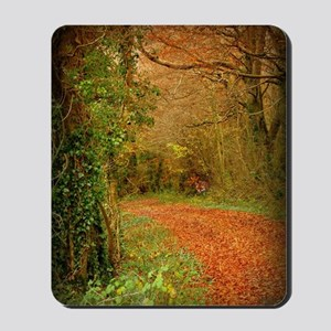 Red Fox on the Golden Path Mousepad