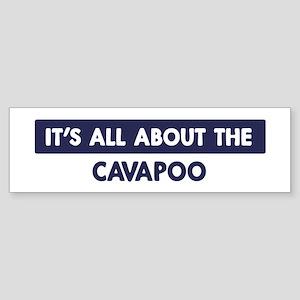 About CAVAPOO Bumper Sticker