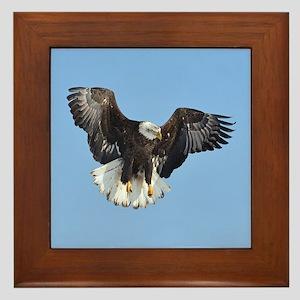 Eagle fluttering Framed Tile