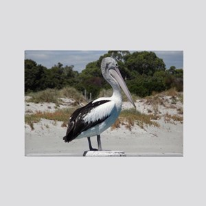 Pelican Standing on Watch Rectangle Magnet