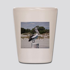 Pelican Standing on Watch Shot Glass