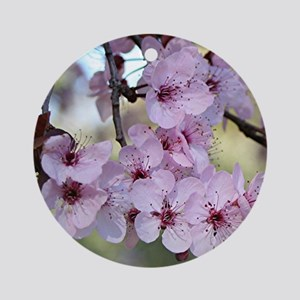 Cherry blossoms in spring time Round Ornament
