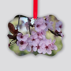 Cherry blossoms in spring time Picture Ornament