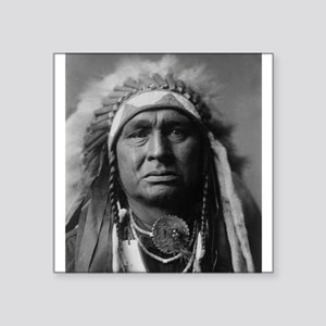 native americans Sticker