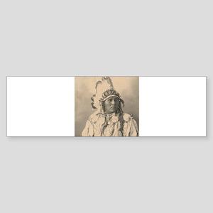 native americans Bumper Sticker