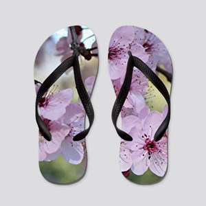 57f5d22ee4043 Cherry blossoms in spring time Flip Flops