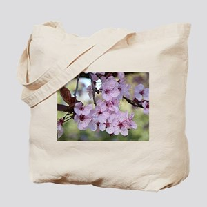 Cherry blossoms in spring time Tote Bag