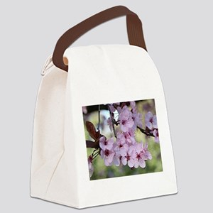 Cherry blossoms in spring time Canvas Lunch Bag