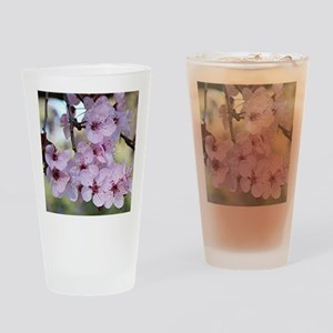 Cherry blossoms in spring time Drinking Glass