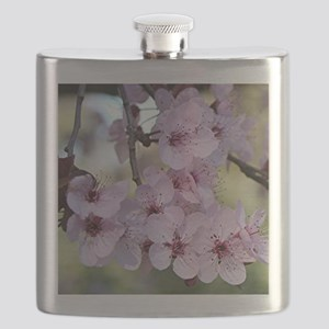 Cherry blossoms in spring time Flask