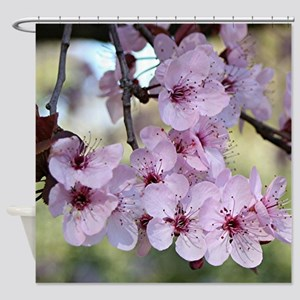 Cherry blossoms in spring time Shower Curtain