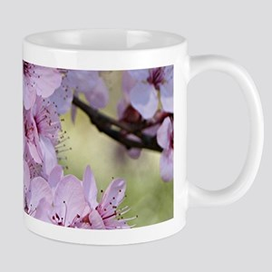 Cherry blossoms in spring time Mugs