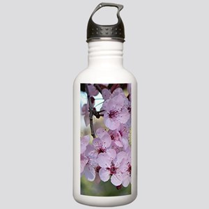 Cherry blossoms in spr Stainless Water Bottle 1.0L