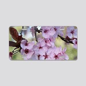 Cherry blossoms in spring t Aluminum License Plate