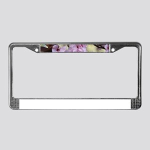 Cherry blossoms in spring time License Plate Frame