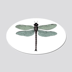 Dragonfly 20x12 Oval Wall Decal
