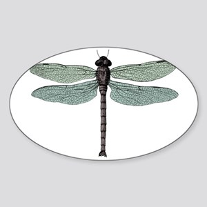 Dragonfly Sticker (Oval)