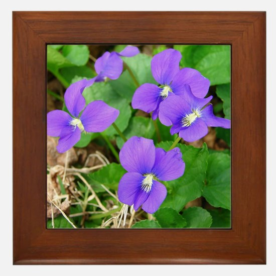 Are Violets Blue? Framed Tile