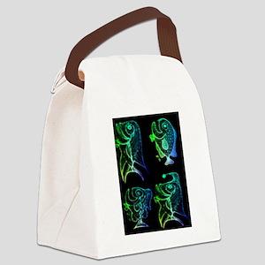 retro fish combo Canvas Lunch Bag