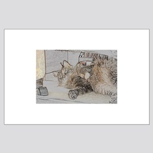Maine Coon cat tabby Large Poster