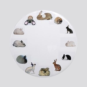 Rabbit Breeds Ornament (Round)