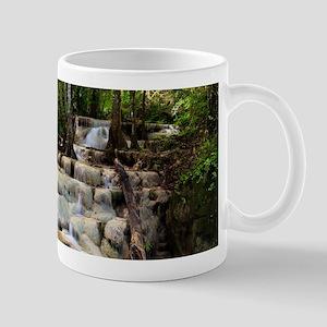 Forest Waterfalls Mugs