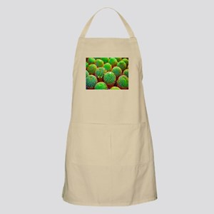 Green Succulents Low Poly Light Apron