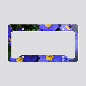 pretty blue garden flowers. f License Plate Holder