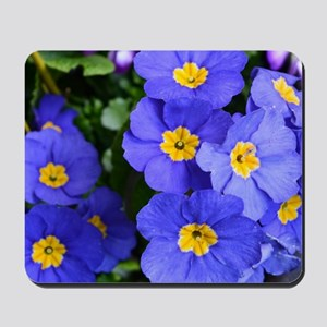 pretty blue garden flowers. floral photo Mousepad