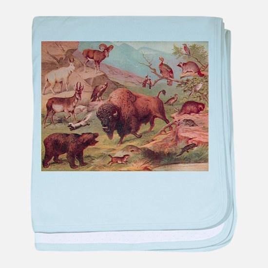 Funny Buffalo bulls baby blanket