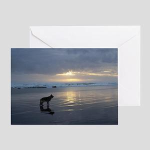 Lone Shepherd Greeting Card