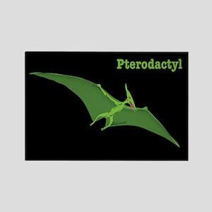 Pterodactyl Dinosaur Rectangle Magnet