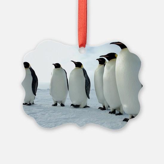 Lined up Emperor Penguins Ornament