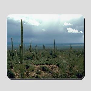 Arizona Desert and Cactuses Mousepad